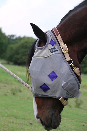 PHT Magnetic Fly Masks